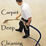 Charlotte Carpet Cleaners