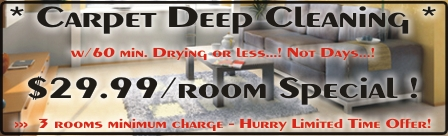 $29.99 per room Coupon for Carpet Cleaning in Charlotte NC